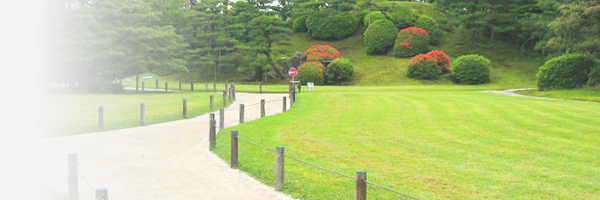 Official Nijo-jo Castle English Guided Tour